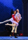 The doll Prince embrace  -The Ballet  Nutcracker Royalty Free Stock Photos