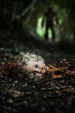 Doll's Head Stock Image