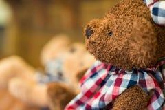 Doll teddybeer in een koffiekoffie die wordt verfraaid Stock Foto's