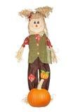 Doll van de herfst stock foto's