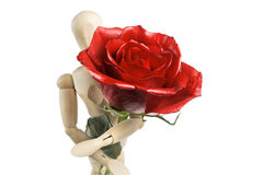 Doll whith rose Royalty Free Stock Image