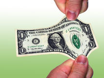 Dollar. George stock photography
