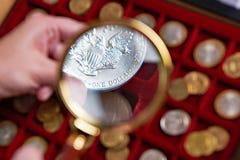Dollar américain sous la loupe Photographie stock libre de droits