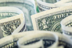 Dollar. American dollar banknotes rolled in different positions.  Stock Images