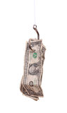 Dollar auf Fishhook Lizenzfreies Stockbild