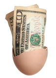 Dollar bank notes in egg Stock Photos