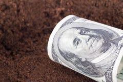 Dollar Banknote on Soil Royalty Free Stock Photos