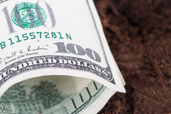 Dollar Banknote on Soil Stock Photography