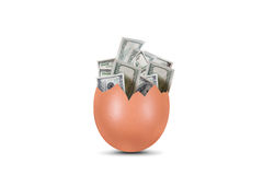 Dollar Banknotes in Broken Egg Stock Photography