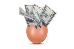 Dollar Banknotes in Broken Egg Royalty Free Stock Photos