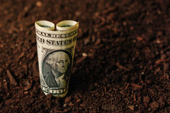 Dollar banknotes cash money in soil ground, income in agricultur Royalty Free Stock Images