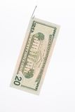 Dollar bill on a hook Stock Photos