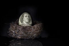 100 Dollar Bill Nest Egg Stock Afbeelding