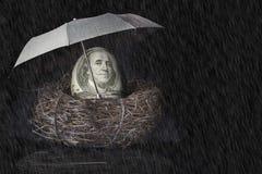 100 Dollar Bill Nest Egg met Paraplu Stock Afbeeldingen