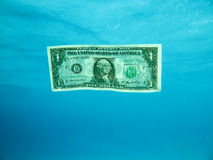 Dollar Bill Underwater Royalty Free Stock Image