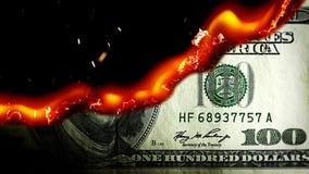 Dollar bill USA money burning in flames stock video footage