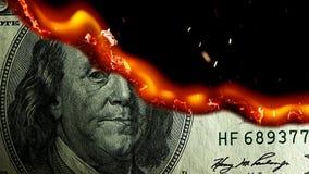 Dollar bill USA money burning in flames stock video