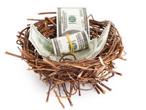 Dollar bills in a birds nest  on white Stock Photo