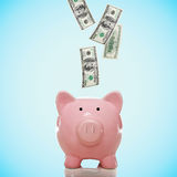 Piggy bank with hundred dollar bills. Dollar bills falling in or flying out of a pink piggy bank Stock Image
