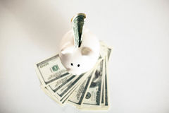 Dollar bills falling in or flying out of a pink piggy bank.  Royalty Free Stock Images