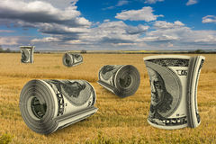 Dollar bills in field Royalty Free Stock Photography