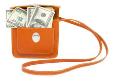 Dollar bills in handbag Royalty Free Stock Photos