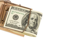 Dollar bills in mousetrap Stock Photography