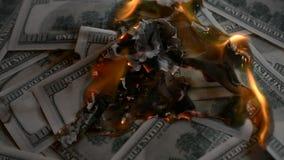 Dollar bills put on fire and burn