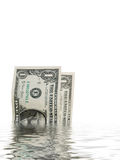 Dollar bills in water Stock Photography