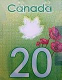20-dollar Canadese macro Royalty-vrije Stock Afbeeldingen