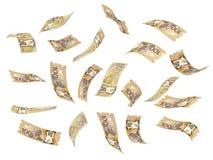 Dollar canadien volant Image libre de droits