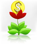 Dollar coin in red flower blossom on white vector Royalty Free Stock Photos