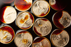Dollar coins in the crude oil Stock Image