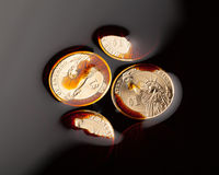Dollar coins in the crude oil. Barrel price concept Royalty Free Stock Photos