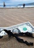 Dollar concept Royalty Free Stock Photos