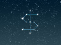Dollar constellation Royalty Free Stock Photo