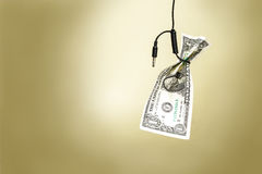 Dollar in a cord loop Stock Photos