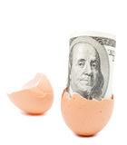 Dollar from egg Royalty Free Stock Photos