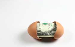 Dollar Egg Stock Photos