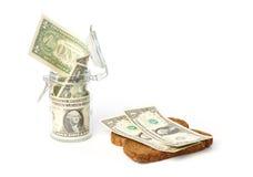 Dollar in einem Glas und auf einer Scheibe brot Stockfotos