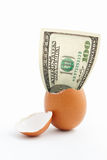 Dollar emerge from egg shell Stock Images