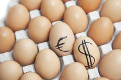 Dollar and euro sign on eggs surrounded by plain brown eggs in carton Stock Images