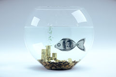 Dollar in form of a fish Royalty Free Stock Photography