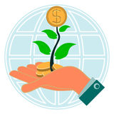 Dollar gold coin, money in the green sprout of tree in her hand Royalty Free Stock Image