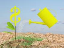 Dollar growth Royalty Free Stock Image
