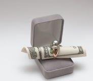 dollar guld- cirkel Royaltyfri Bild