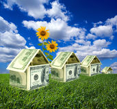 Dollar houses in countryside stock illustration