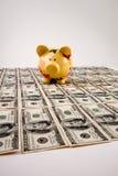 dollar hundra för 100 bills Royaltyfri Fotografi