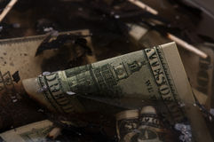 Dollar i en skrotupplag Arkivfoto