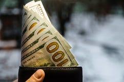 Dollar i plånbok och hand arkivbild